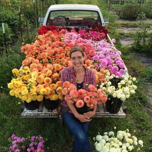 Những cành hoa thực dược được chuẩn bị kỹ càng